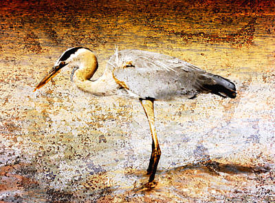 Photograph - Heron by Ellen Heaverlo