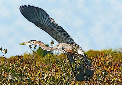 Ibis Drawing - Heron Glide by Alex Suescun