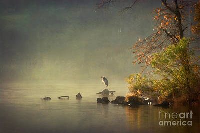 Heron In Morning Mist Art Print