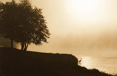 Heron In The Mist Art Print