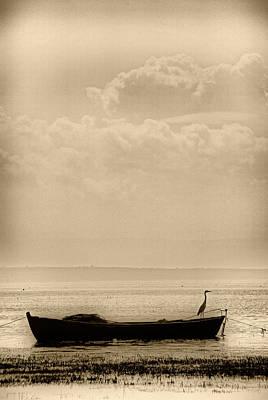 Photograph - Heron On The Boat by Okan YILMAZ
