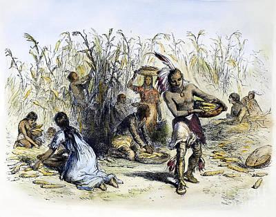 Indian Basket Photograph - Hiawatha: Corn Harvesting by Granger