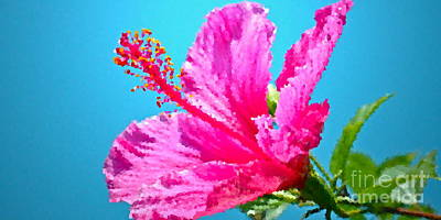 Hibiscus Crystal Luster Art Print by Gwyn Newcombe