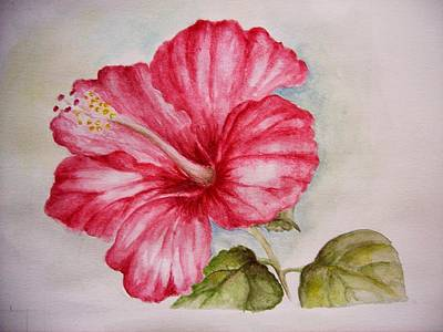 Painting - Hibiscus Flower by Draia Coralia