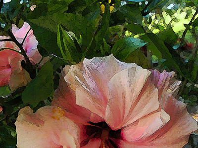 Photograph - Hibiscus Seclusion by Katharine Birkett