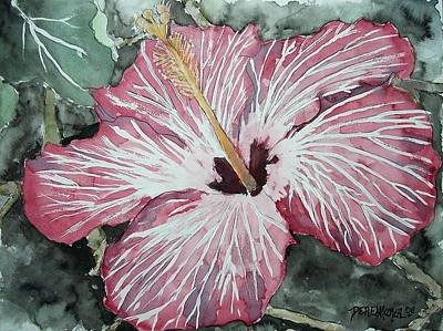 Painting - Hibiscus by Unknown