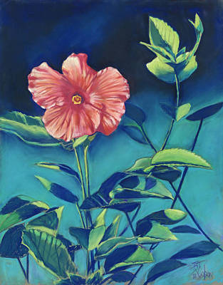 Pastel - Hibisicus by Billie Colson