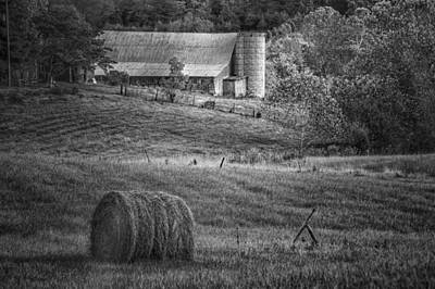 Shed Digital Art - Hidden Away In Black And White by Mary Timman