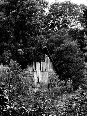 Photograph - Hidden Barn by Kristie  Bonnewell