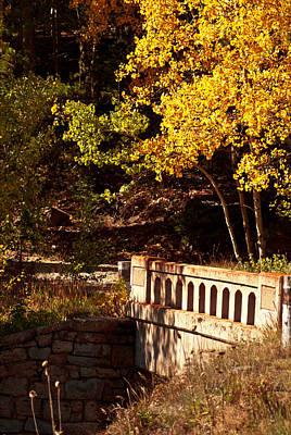 Photograph - Hidden Bridge by Colleen Coccia