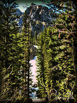 Photograph - Hidden Falls Yellowstone by Joan  Minchak
