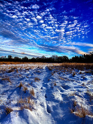 Hidden Meadow Print by Phil Koch