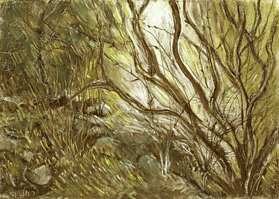 Painting - Hideaway Plants In Brown Yellow And Green Branches Leaves Trunks Stones by Rachel Hershkovitz