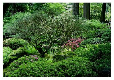 Art Print featuring the photograph Hiding In A Sea Of Green by Frank Wickham