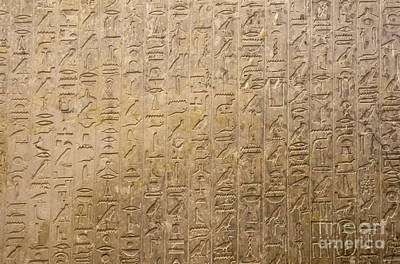 Hieroglyphics Art Print by Adam Crowley