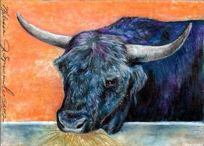 Drawing - Highlander Bull by Melissa J Szymanski