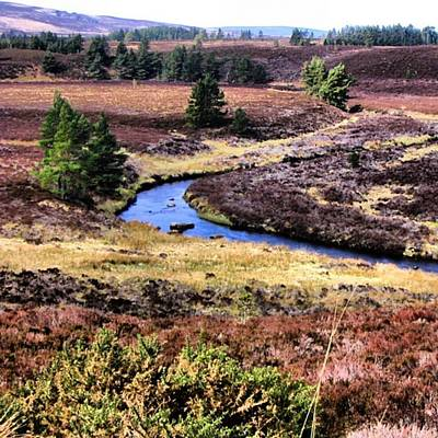 Landscapes Wall Art - Photograph - Highland's Landscape by Luisa Azzolini