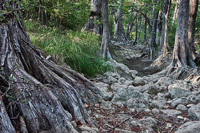 Photograph - Hill Country Drought by James Woody
