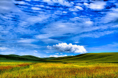 Photograph - Hills Of Wheat In The Palouse by David Patterson