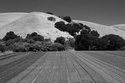 Print featuring the photograph Hillside Farmland by Kathleen Grace