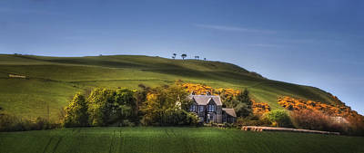 Photograph - Hillside Paradise by Evelina Kremsdorf