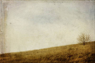 Hill Photograph - Hillside by Rebecca Cozart
