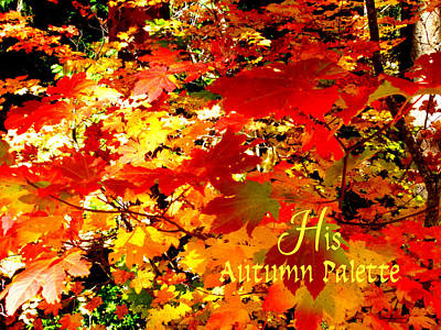Photograph - His Autumn Palette by Cindy Wright
