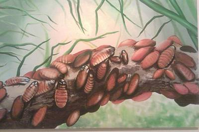 Cockroach Painting - Hissing Cockroaches by Serenity Baumer