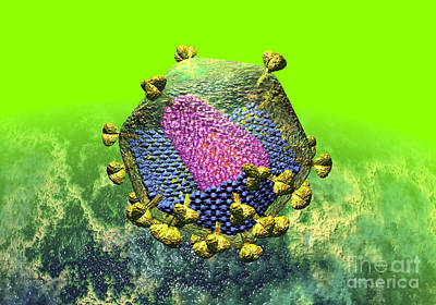 Digital Art - Hiv Virion Translucent On Green by Russell Kightley