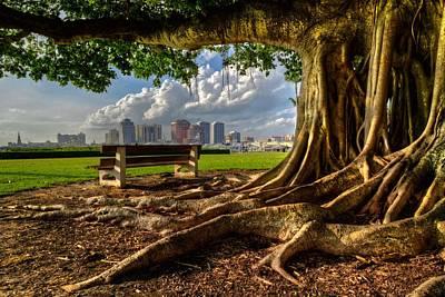 Photograph - Hobbit Eyeview by Debra and Dave Vanderlaan