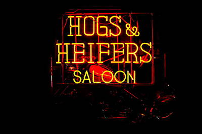 Hogs And Heifers Art Print by Bobby Deal