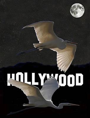 Salt Flats Mixed Media - Hollywood Birds Great Egrets  by Eric Kempson