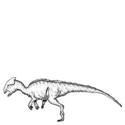 Homalocephale - Dinosaur Art Print by Karl Addison