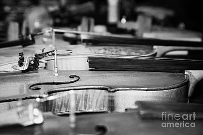 Homemade Handmade Violins Made Of Different Materials And Shape Art Print by Joe Fox