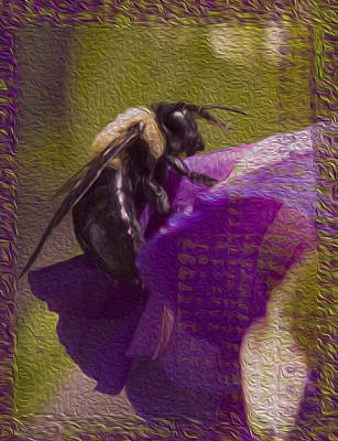 Photograph - Honey Bee by Shelley Bain