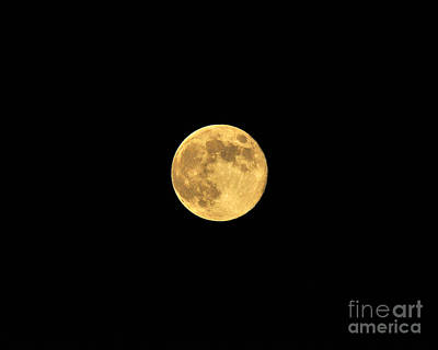 Lunation Photograph - Honey Moon by Al Powell Photography USA