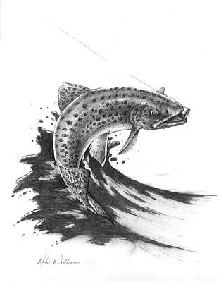 Trout Stream Drawing - Hooked by Mike Worthen