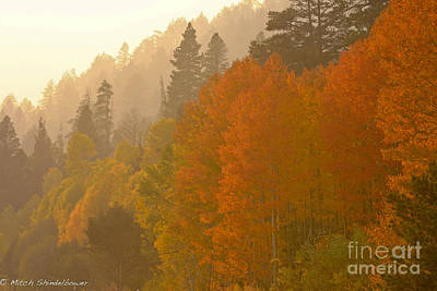Art Print featuring the photograph Hope Valley by Mitch Shindelbower