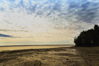 Photograph - Hopewell Rocks by Michel Legare