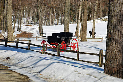Art Print featuring the photograph Horse And Buggy - No Work Today by Janice Adomeit