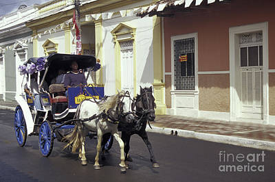 Photograph - Horse And Carriage Granada Nicaragua by John  Mitchell