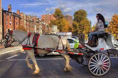 Photograph - Horse And Carriage by Joann Vitali