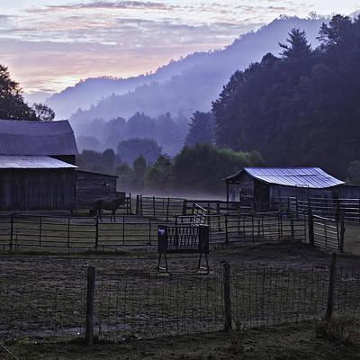 Horse At Home - North Carolina Farm Scene Art Print by Rob Travis