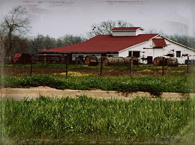 Photograph - Horse Barn In Texas by Paulette B Wright