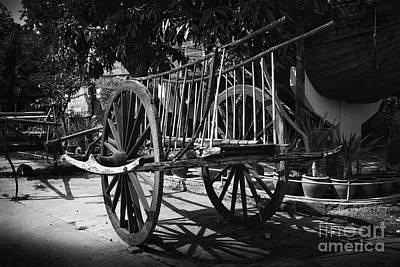Horse Cart Art Print by Thanh Tran