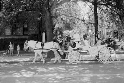 Photograph - Horse Drawn Carriage  by Emery Graham