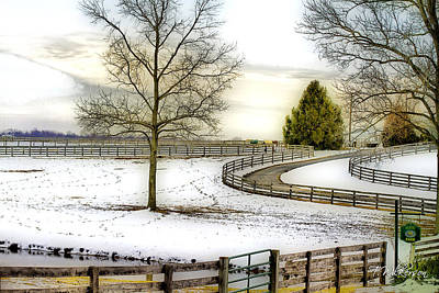 Photograph - Horse Farm In Winter by Trudy Wilkerson