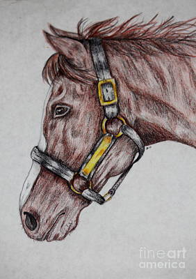 Horse Head 1 Art Print