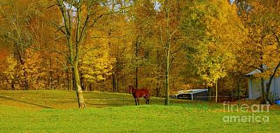 Horse In Autumn Art Print by Kathleen Struckle