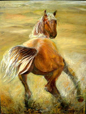 Horse In Field Art Print